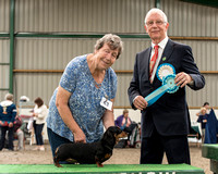 Indyvic Enchanted Onyx - Reserve Best Veteran In Show