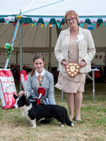 Junior Handler - Ellen Wilcocks